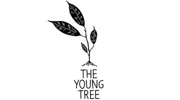 young-tree-logo-360